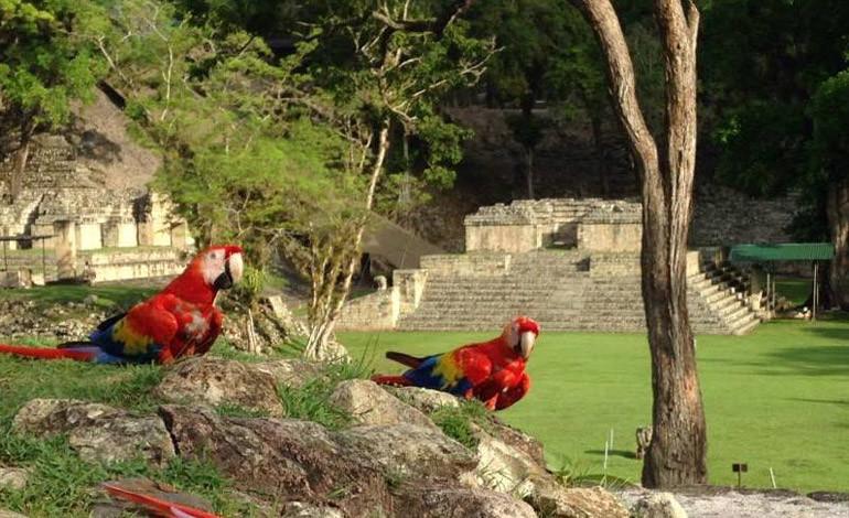 Ventur Travel, Copán Ruinas.jpg