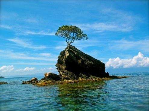 San-Pedro-Sula-Copan-Cayos-Cochinos.jpg